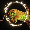 Цирки в Байкальске